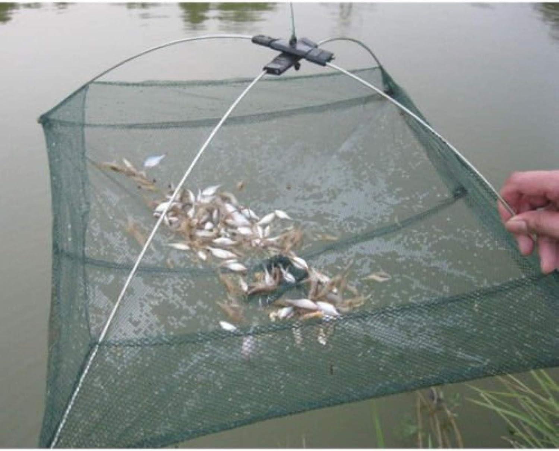 gravity anchor sinker stone crayfish bottom feeders Aquarium Safe oto Made for mid-sized Pleco shrimp Medium KuboChini clay weight