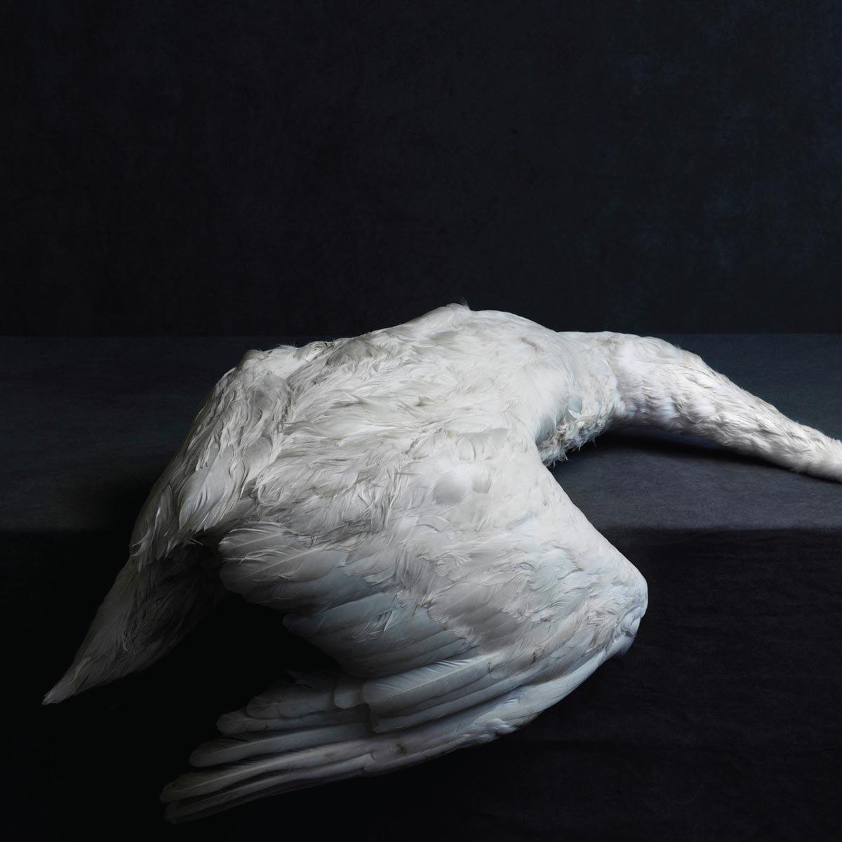 Amenra - Mass Vi (CD)