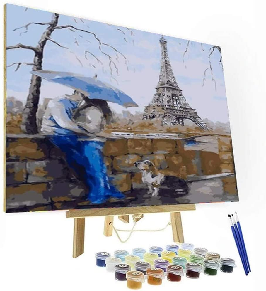 Wooden Framed  DIY Oil Painting Paint by Number Kit for Adults kid Paris lover