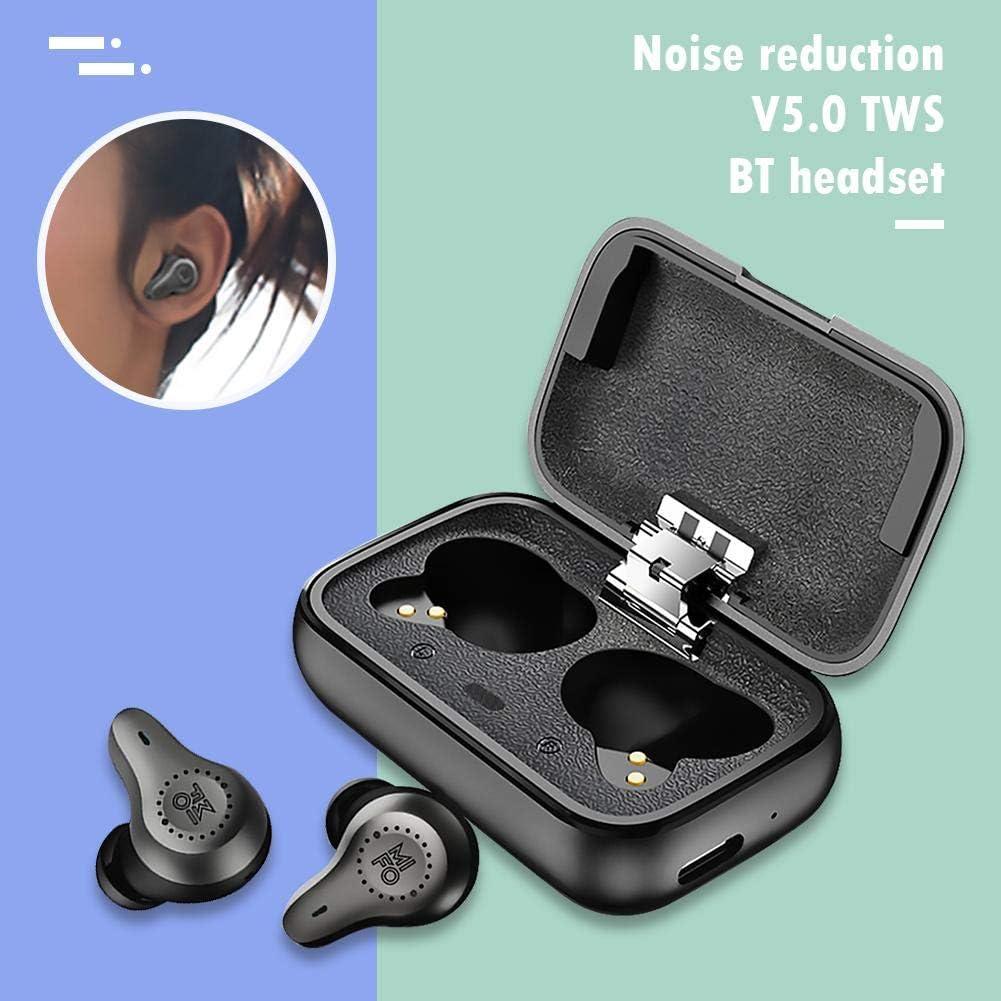 RUIE TWS BT5.0 - Auriculares in-Ear (equilibrados MIFO, con Sistema de cancelación de Ruido y Caja de Carga), Double Balanced: Amazon.es: Hogar