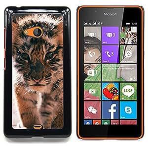 - Tiger Cub Roar Cute Puppy Animal Furry/ Duro Snap en el tel????fono celular de la cubierta - Cao - For Microsoft Nokia Lumia 540 N540