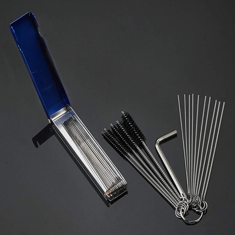 Lionina Kit de Limpieza Carbono Carburador 12 Agujas Cepillos de ...