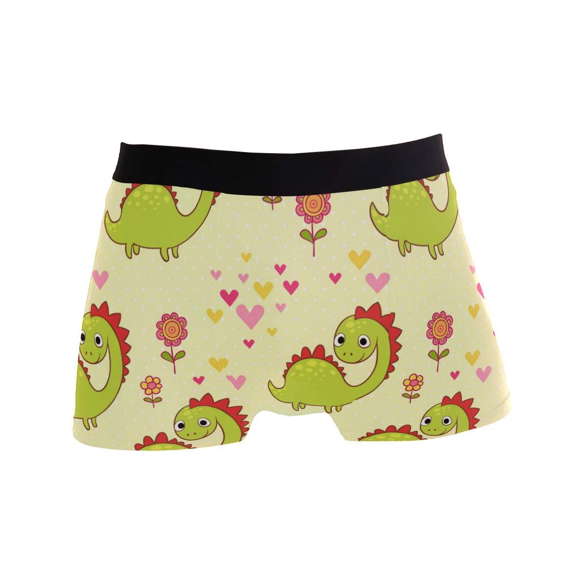 WIHVE Mens Boxer Briefs Cute Cartoon Dinosaurs Flowers Floral Hearts Underwear Regular Leg No Ride Up Trunks