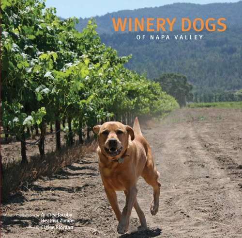 - Winery Dogs of Napa Valley