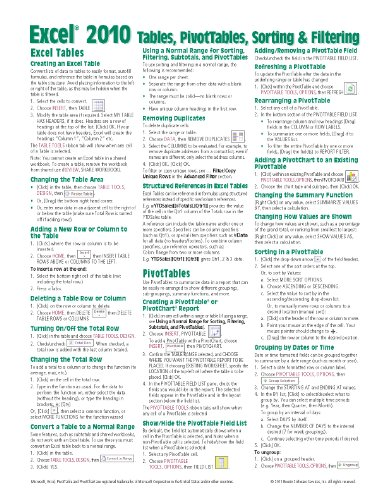 Microsoft Excel 2010 Tables, PivotTables, Sorting & Filtering Quick Reference Guide (Cheat Sheet of Instructions, Tips & Shortcuts - Laminated Card) - Beezix Inc