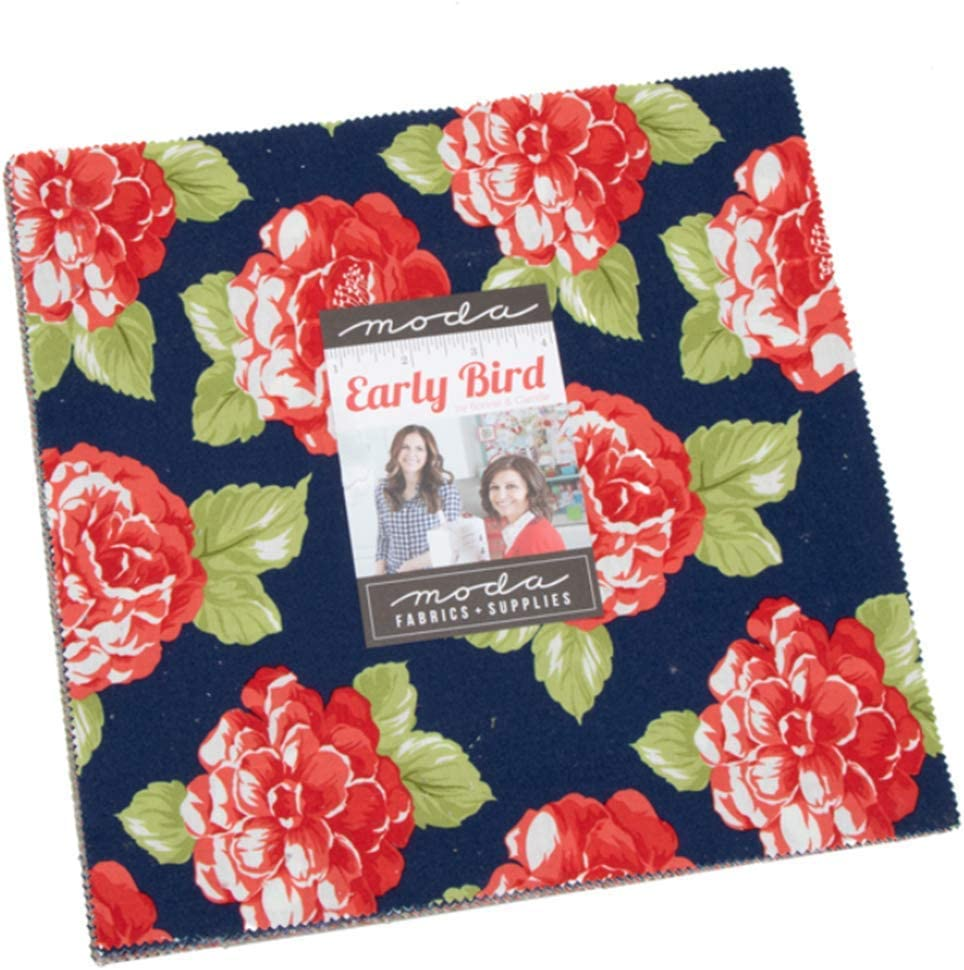 Early Bird by Kate Spain Layer Cake
