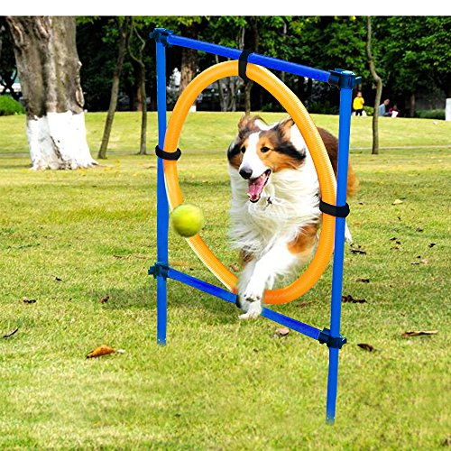 OSPet Dog Training Puppy Outdoor Games Dog Toys Agility Training Equipment Dog Jump Hoop by OSPet