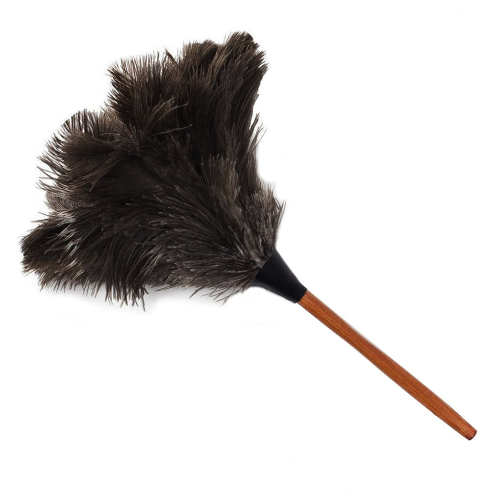 PNBB 16.9'' Ostrich Feather Duster with Wooden Handle