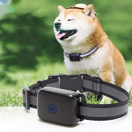 FXQIN Rastreador GPS para Perros, Anti Lost Pets Collar ...