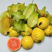 wild food plants of hawaii