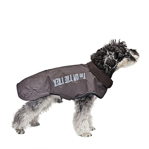 Amazon.com : Kimol Windproof Dog Cold Weather Coat Winter Pet Clothes Cape Waterproof, Canvas (Color : Pink, Size : XXS)  : Pet Supplies