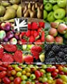 Bulk 9 Variety Fruit Seeds Survival Seeds 600 Seeds + Tomato Seeds Upc 648620998422 + 9 Plant Markers Pear Strawberry Blackberry Cherry Tomato