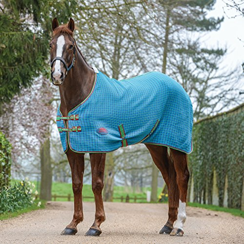 Weatherbeeta Waffle Standard Neck Cooler Rug 6ft Blue Green Cerise Weatherbeeta Cooler