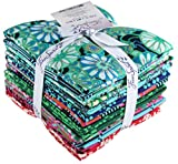 Amy Butler True Colors 20 Fat Quarter Bundle Free Spirit