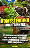 Homesteading for Beginners: 25 Lessons How To Grow Your Own Food, Repair Home, Raising Livestock And Generating Energy (Homesteading Books, Homesteading ... Homesteaders, Backyard homestead)