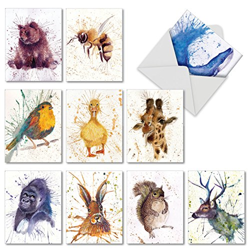 - AM2954OCB-B1x10 Wildlife Splash : Assorted Blank All Occasions Note Cards Featuring Water Colored Splashes on Animals Artistic Illustrations, with Envelopes.