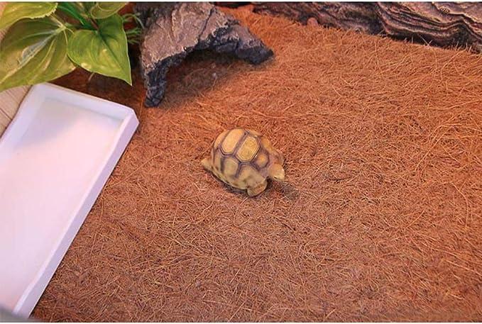 POPETPOP 3PCS Rettile Mat Naturale Coconut Reptile Cage Tappeto per Rettile Terrario Liner per Lizard Snake Chamelon Turtle Bunny Coniglio