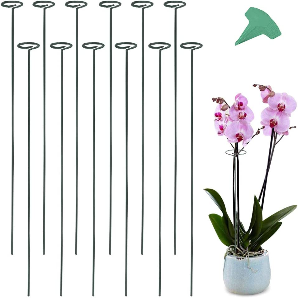 GROWNEER 24 Packs 36 Inches Garden Flower Support Plant Support Stakes, with 15 Pcs Plant Labels, Single Plant Stem Flower Support for Flowers, Orchid, Peony, Lily, Rose