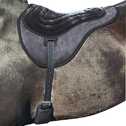 Intrepid International Comfort Plus Bareback Pad, Black (Pad Saddle Back)