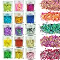 SWS Set of 15 Chunky Hair and Body Glitter, Colorful Mixed Festival Glitter, Eye Sparkles Nails Flake Glitter Powder Cosmetic Face Sequins