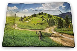 DayDayFun Landscape Cute Pet Mat Hand Drawn Rural Scenery Small Town Farm Houses Forest and Mill Romantic Sketch Pet Mats for Food and Water Black White