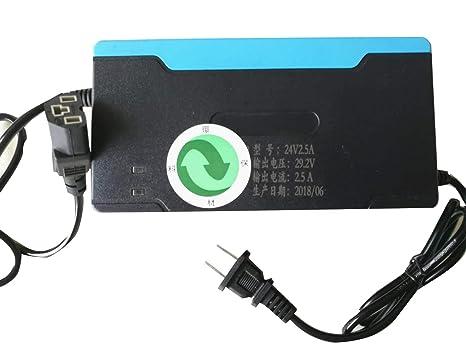 Cargador Compatible para el Paquete de baterías LiFePO4 ...