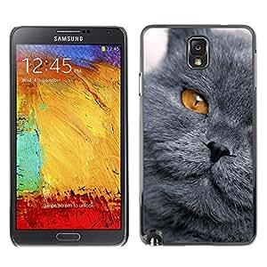 YiPhone /// Prima de resorte delgada de la cubierta del caso de Shell Armor - Scottish Fold Cat Chartreux British - Samsung Galaxy Note 3 N9000 N9002 N9005
