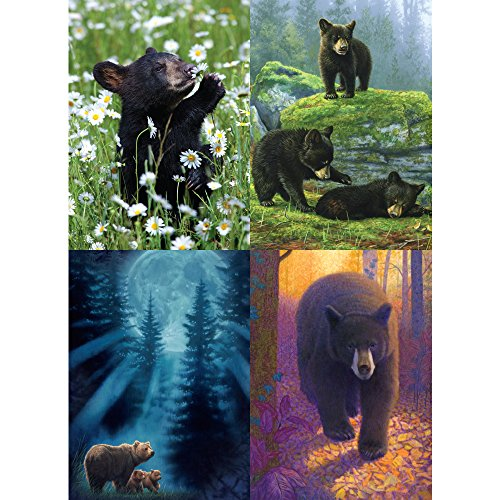 Beautiful Black Bear All Occasion Card Assortment, 5 x 7 Inches, 8 Cards and Envelopes per Set (GA31425) ()