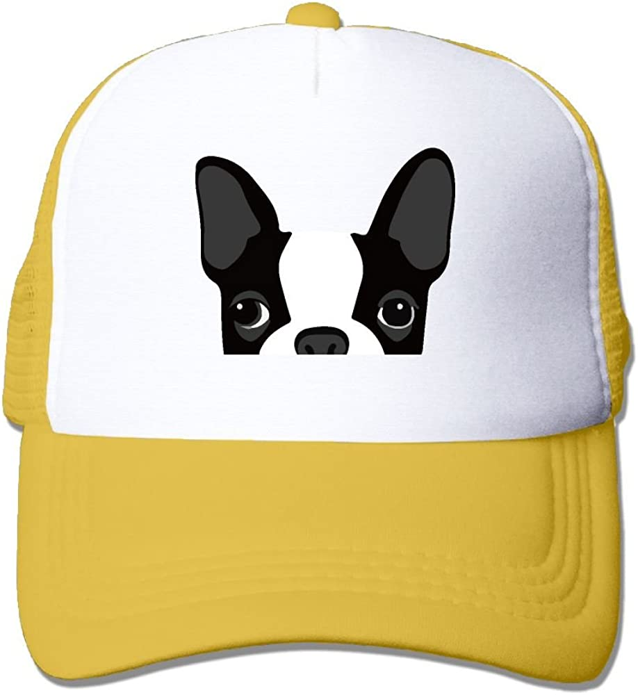 Boston Terrier Mesh Caps Adjustable Unisex Snapback Trucker Cap