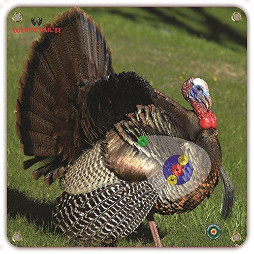 foam turkey targets - 2