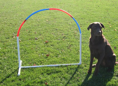 Affordable Agility Hoopers Hoop