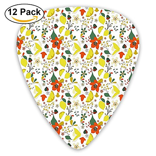 Newfood Ss Spring Flowers With Lemons Leaves Inspirational Artistic Guitar Picks 12/Pack Set ()