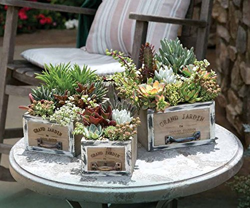 Rustic Wood Succulent Garden Planter Pots - Square Drawer 3 Box Set - Bonus EBook Included