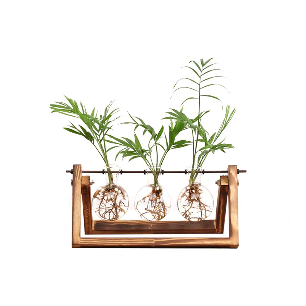 Ivolador Desktop Glass Planter Bulb Vase with Retro Solid Wooden Stand and Metal Swivel Holder for Hydroponics Plants Home Garden Wedding Decor (3 Bulb Vase) product image