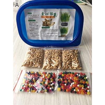 Qianren Orangic Cat Grass Seeds Set Crystal Ball Or Nutrient Soil Growing Tray : Garden & Outdoor