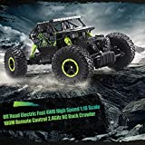 TTLIFE RC Car 2.4G 4CH 4WD Rock Crawlers 4x4 Driving Car 1:18 Double Motors Drive Bigfoot Car Remote Control Car Model Off-Road Vehicle Toy (Green)