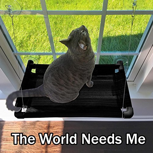 Cat Window Perch - Durable Cat Hammock for Window with Japan Made Cups hold up to 50lbs 100% Safe Cat Sunny Seat & Window Mounted Cat Bed Perfect Strong Cat Hammock for Your Kitty ENJOY SUNSHINE