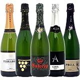 本格シャンパン製法の泡5本セット((W0P512SE))(750mlx5本ワインセット)