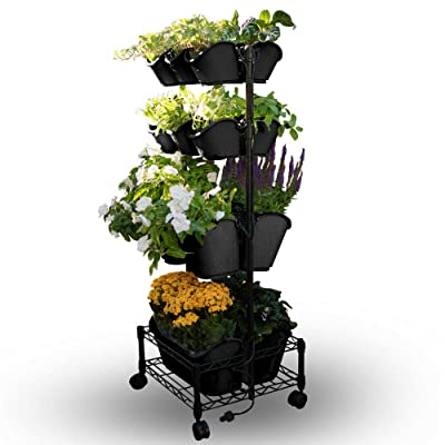 Watex Mobile Green Wall (Double Frame, Black), BPA Free Planters: Garden & Outdoor
