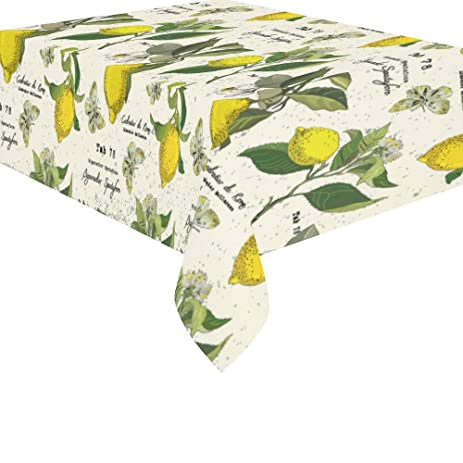 InterestPrint Home Table Decor Vintage Botanical Lemon Butterfly Tablecloth  52 X 70 Inches, Flower Leaves