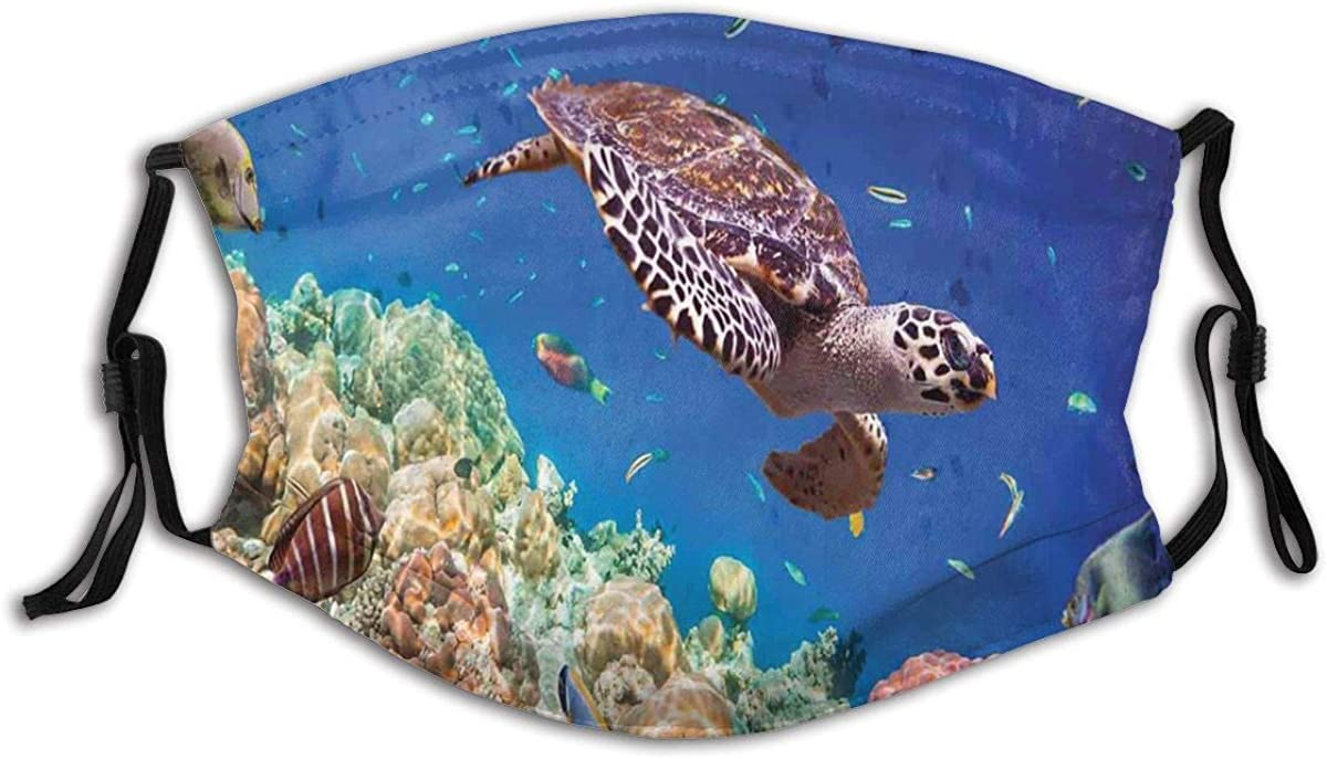 Face Cover Lonely Old Tropical Sea Turtle Swimming Shoal Sea Sponges Maldives Breathable Washable Face Protection with 2 Filter for Men Women Cycling Camping Travel