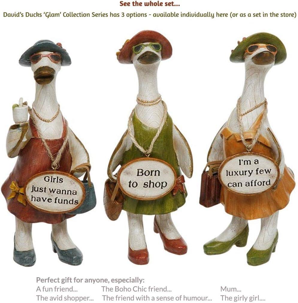 Funky Fun Bathroom Message Ducks Ornaments