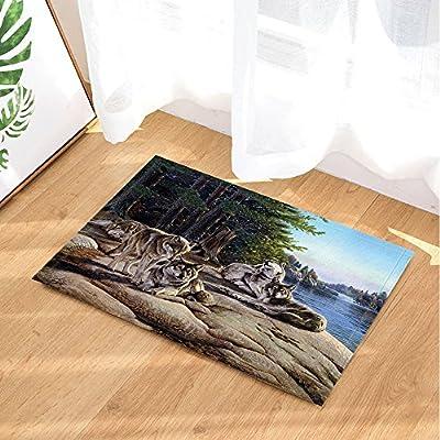 amazoncom nymb wild animal bath rugs hand painted wolf pack on stone lake woods landscape non slip doormat floor entryways indoor front door mat