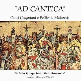 Amazon.com: Stella Splendens In Monte: Schola Gregoriana Mediolanensis