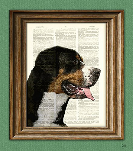 Greater Swiss Mountain Dog Swissy beautifully upcycled vintage dictionary page book art print