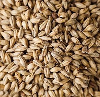Dingemans Belgian Aromatic Malt Home Brewing Malt Whole Grain 1lb Bag