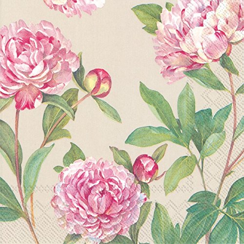 Boston International 40 County 3-Ply Paper Lunch Napkins, Paeonia Linen (Peony Linen)