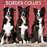 Just Border Collies 2017 Wall Calendar (Dog Breed Calendars)