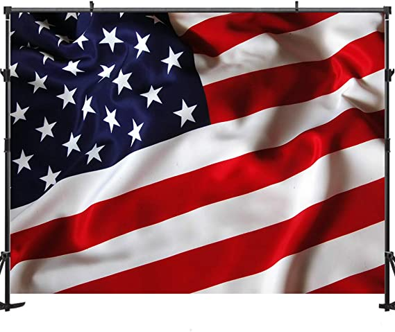 6x6FT Vinyl Photo Backdrops,Americana,Flag Flying Butterflies Background Newborn Birthday Party Banner Photo Shoot Booth