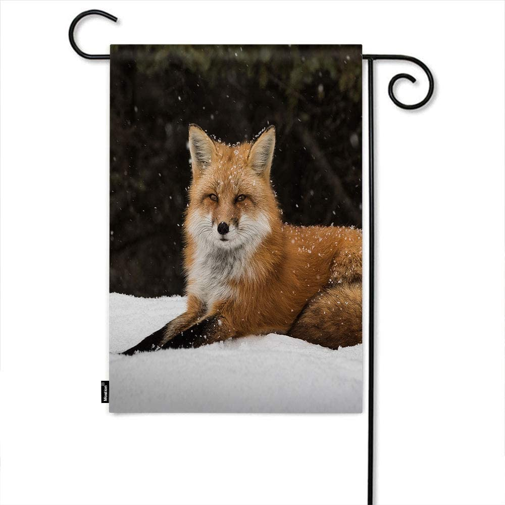 Moslion Fox Garden Flag Wild Animal Cute Foxes Lie in Forest Snow Field Tree Snowflake Home Flags 12x18 Inch Double-Sided Banner Welcome Yard Flag Outdoor Decor. Lawn Villa